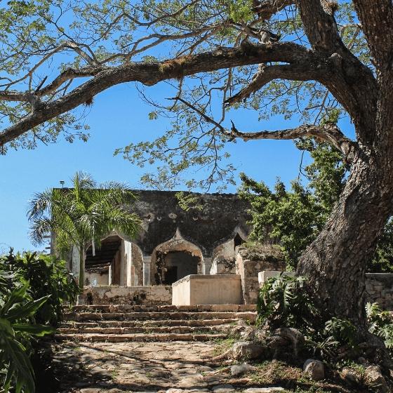 Cenotes Hacienda Mucuyché